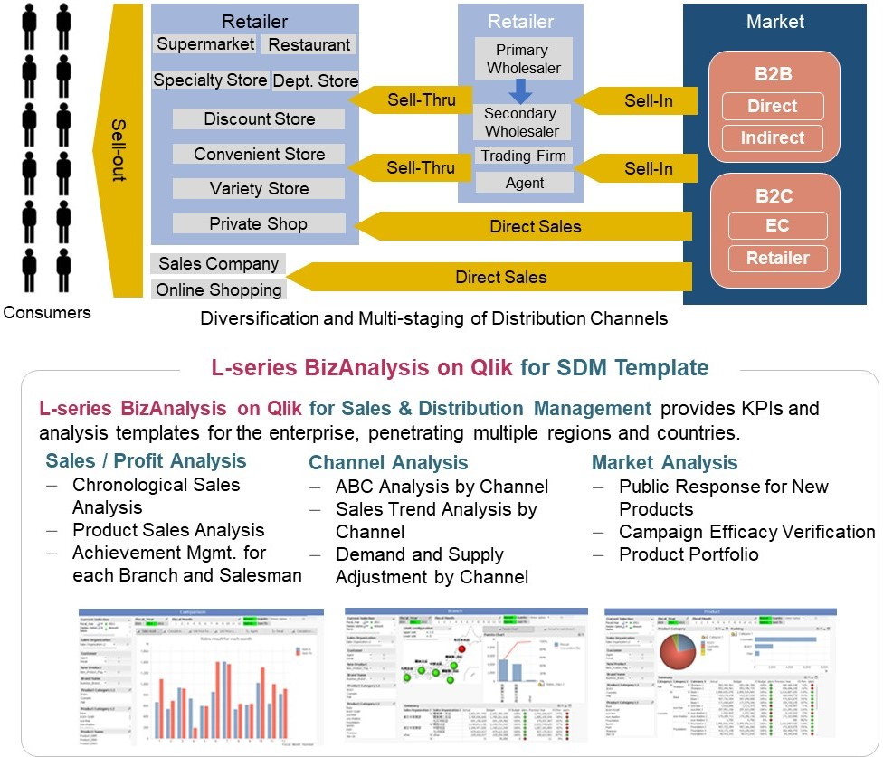 BizAnalysis on Qlik for SDM